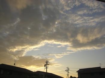 20099_036_2