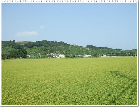 20108_064